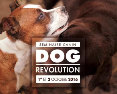Dog Révolution Conférence